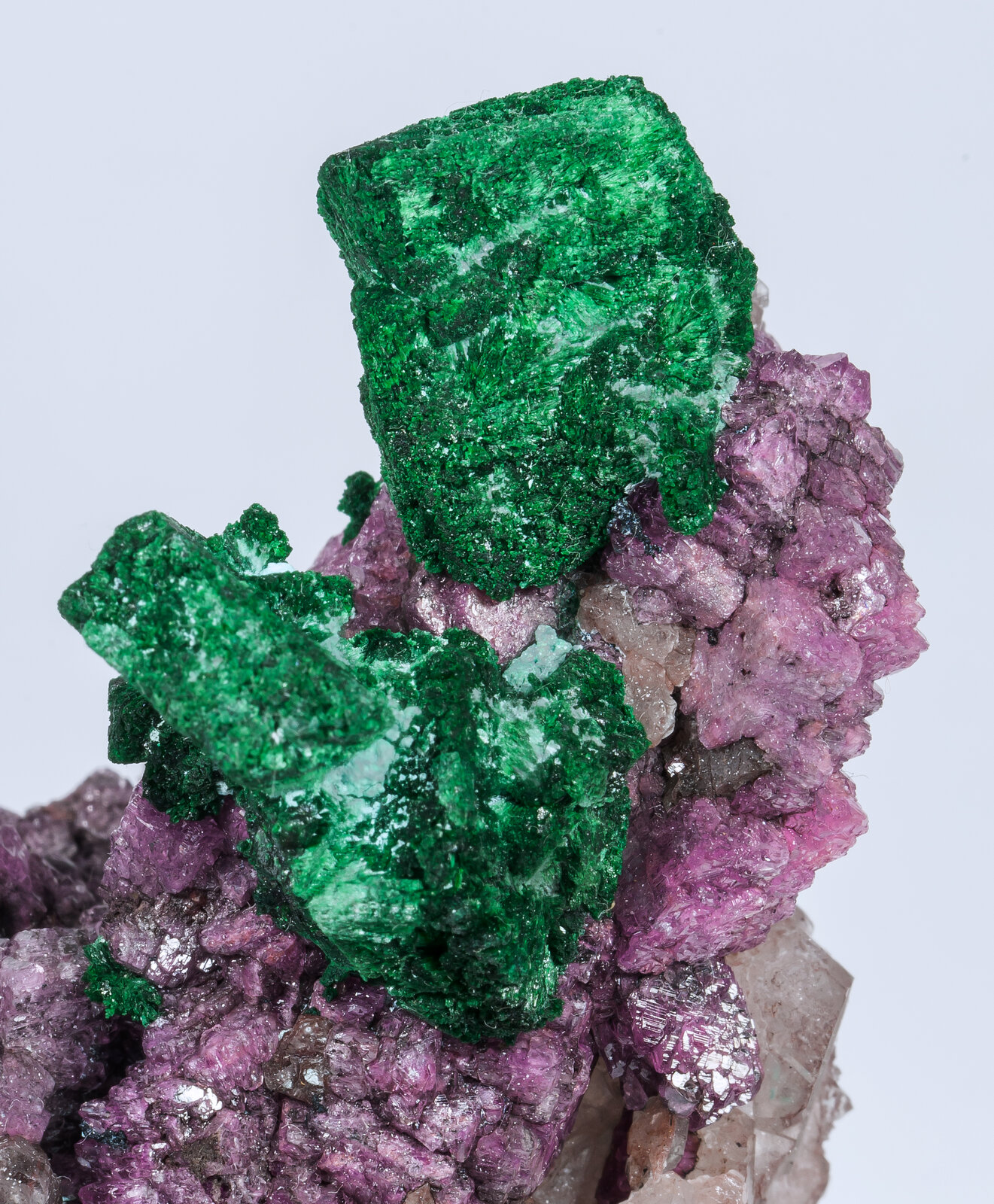 specimens/s_imagesAM8/Malachite-TZ91AM8d2.jpg