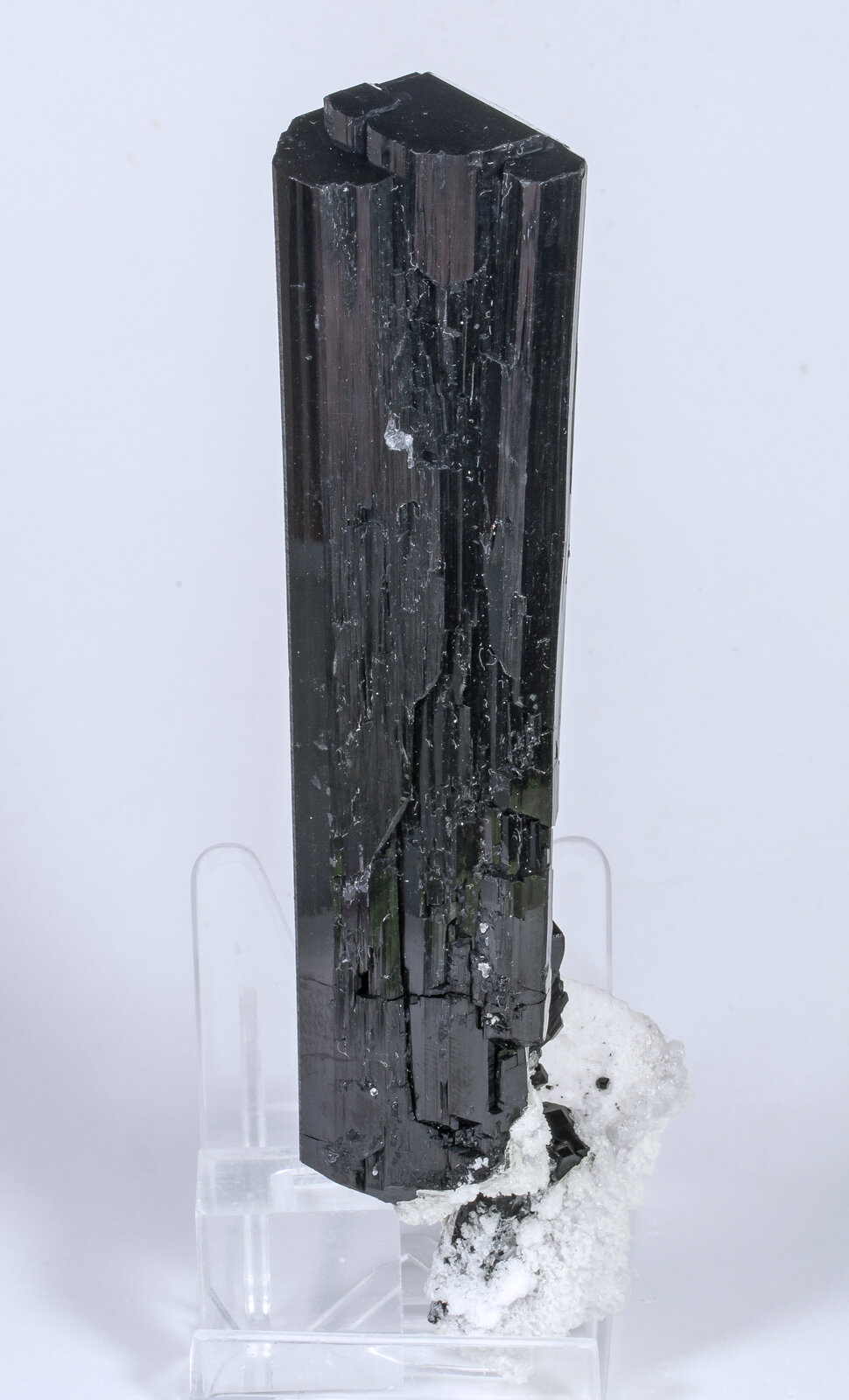specimens/s_imagesAM8/Schorl-TP99AM8f.jpg