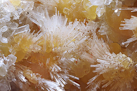Hydroboracite with Celestine and Calcite. Detail / Photo: Joaquim Callén