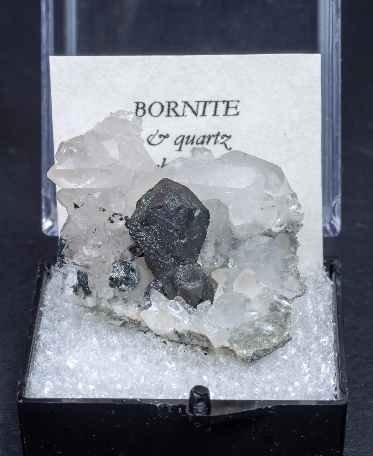 specimens/s_imagesAN0/Bornite-MJ66AN0f.jpg