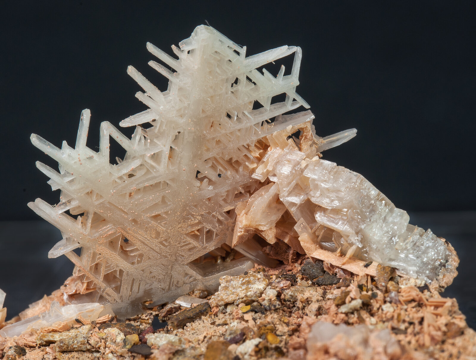 specimens/s_imagesAN0/Cerussite-NB87AN0d.jpg