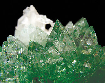 Fluorapophyllite-(K) with Stilbite.