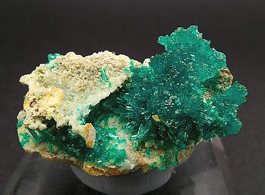 Dioptase with Wulfenite.