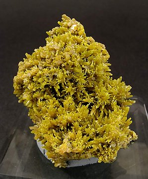 Mimetite with Pyromorphite and Wulfenite.