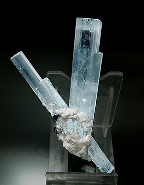 Beryl (variety aquamarine) with Albite and Schorl. Rear