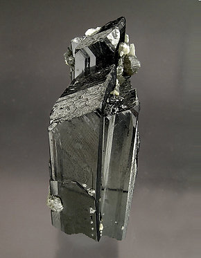 Ferberite with Muscovite, Siderite and Quartz. Side