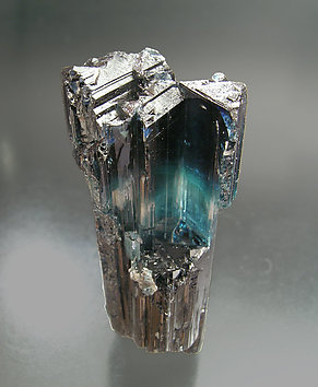 Sceptered Elbaite (indicolite). Rear