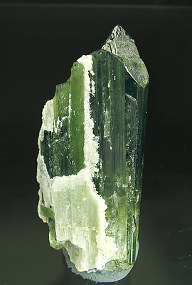 Elbaite with Mica. Rear