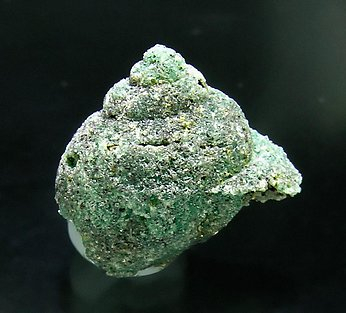 Beryl (variety emerald) replacing fossil.