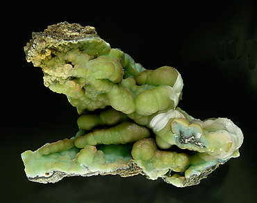 Doyleite with Gibbsite.