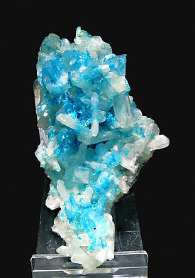 Cavansite on Stilbite.