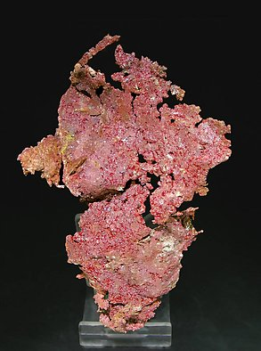 Cuprite (Chalcotrichite) with Copper. Rear