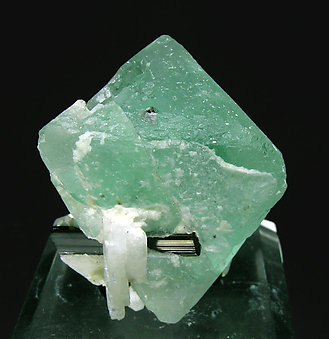 Octahedral Fluorite with Schorl and Albite. Rear