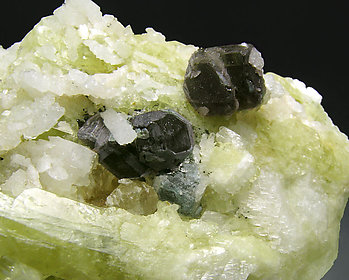 Fluorite with Brazilianite and Albite.