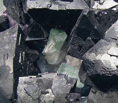 Octahedral Fluorite with Bertrandite and Fluorapatite.