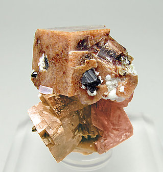 Rhodochrosite with Analcime and Aegirine.