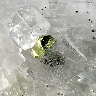 Fluorite with Chalcopyrite.