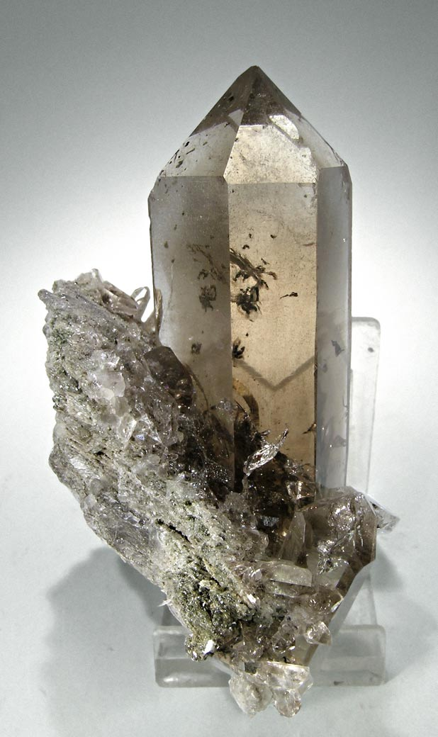 specimens/s_imagesM4/Smoky-Quartz-AF89M4s.jpg