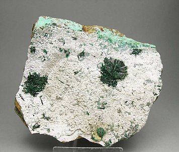 Atacamite with Halloysite.