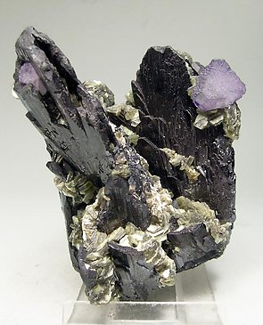 Ferberite with Fluorite and Muscovite.