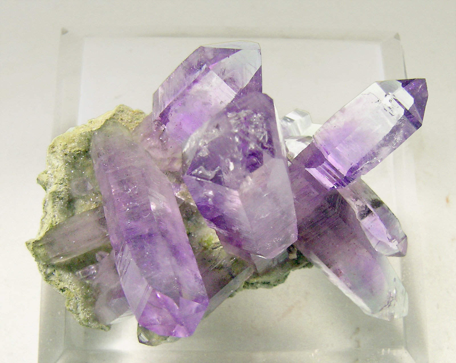 specimens/s_imagesN4/Quartz_Amethyst-HA7N4t.jpg