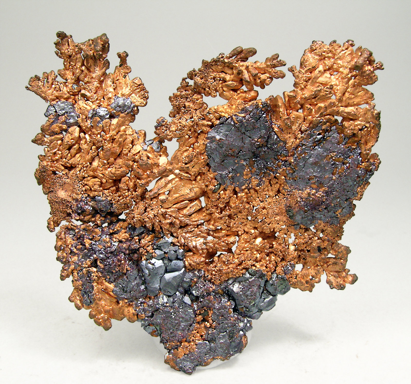 specimens/s_imagesN6/Copper-AV47N6r.jpg
