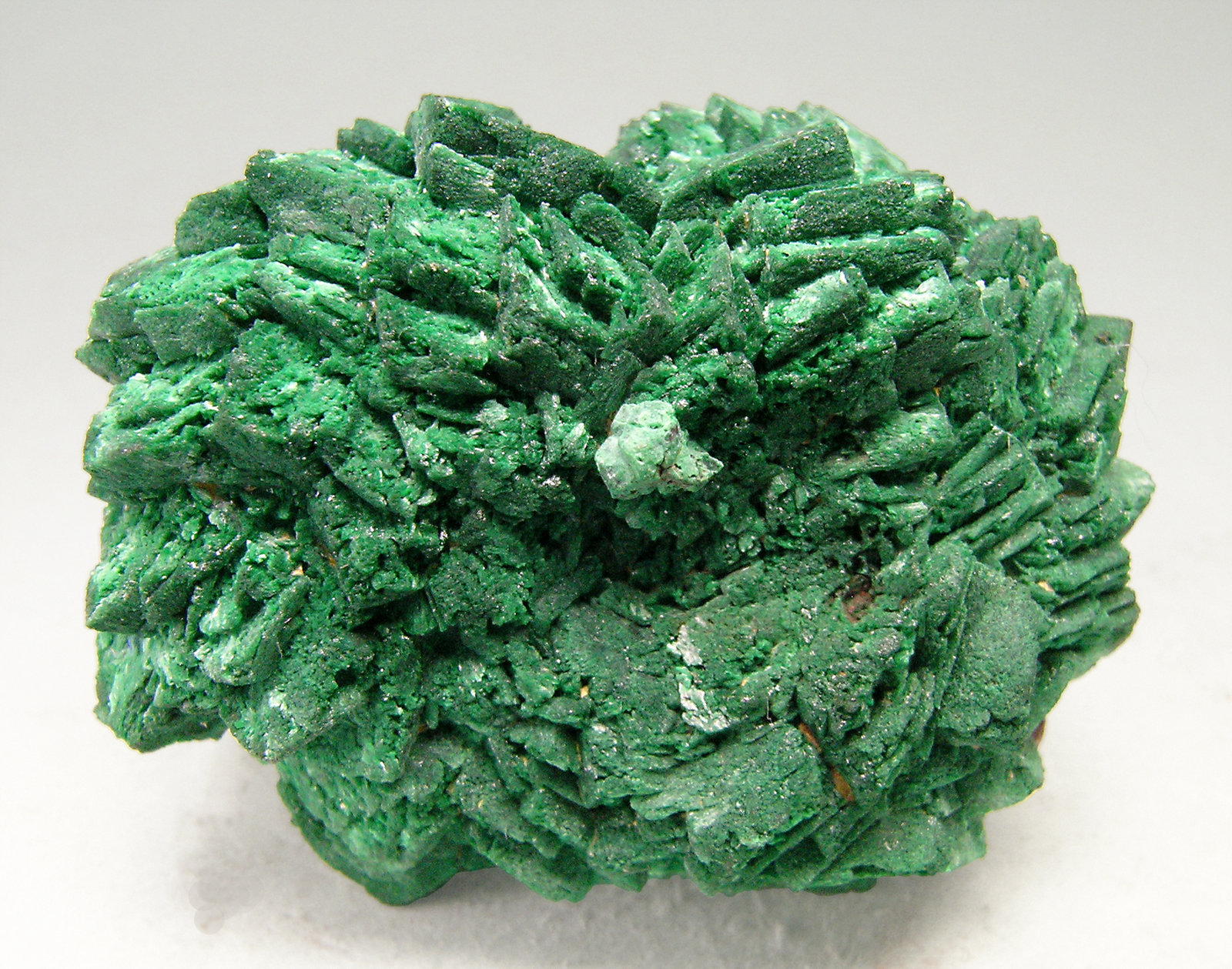 specimens/s_imagesN6/Malachite_after_Azurite-TA14N6r.jpg