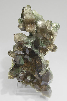Smoky Quartz with Chlorite and amphibole. Front