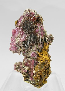 Painite with Corundum (variety ruby).