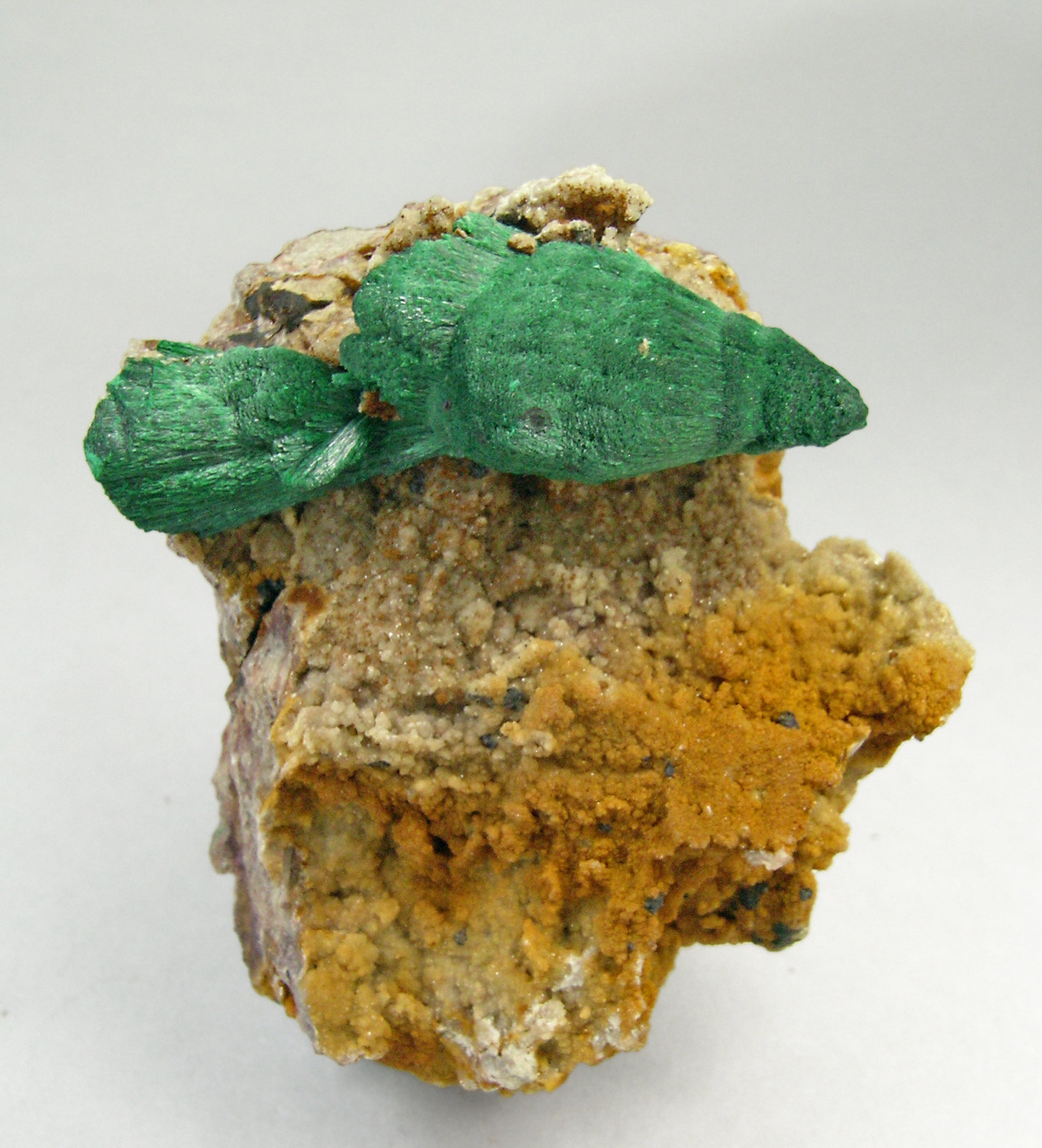 specimens/s_imagesP9/Malachite-NP26P9.jpg