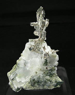 Allargentum with Dyscrasite, Silver, Calcite and Actinolite.