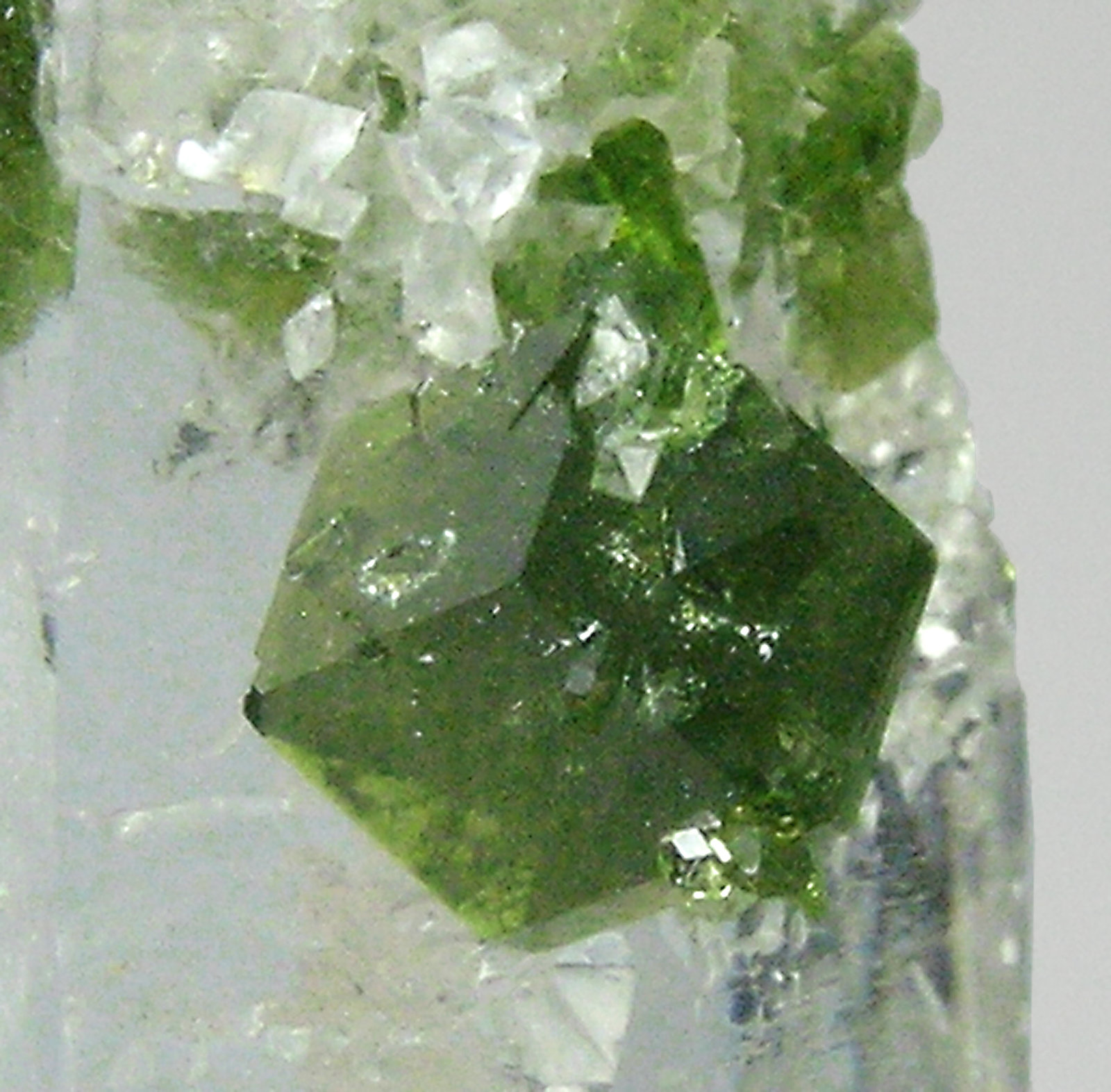 specimens/s_imagesQ5/Quartz-GF64Q5d2.jpg
