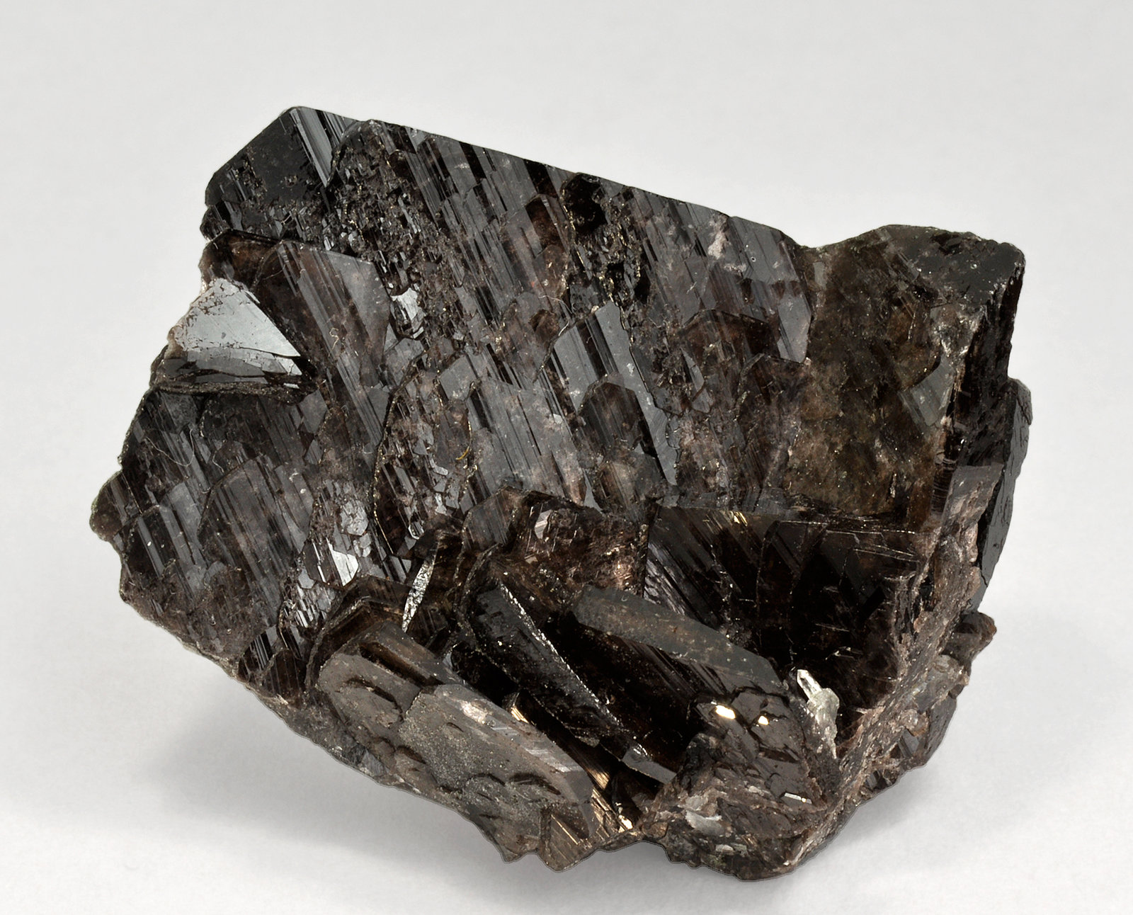specimens/s_imagesQ8/Axinite_Fe-TT88Q8.jpg