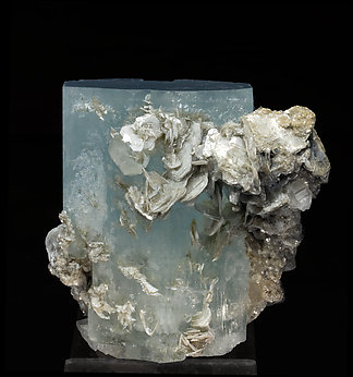 Beryl (variety aquamarine) with Muscovite and Quartz. Rear