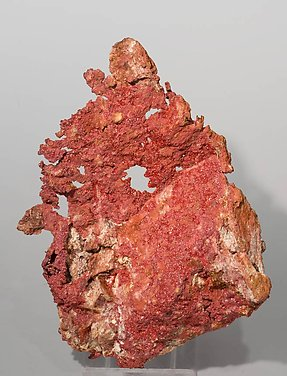 Cuprite (Chalcotrichite) with Copper. Front