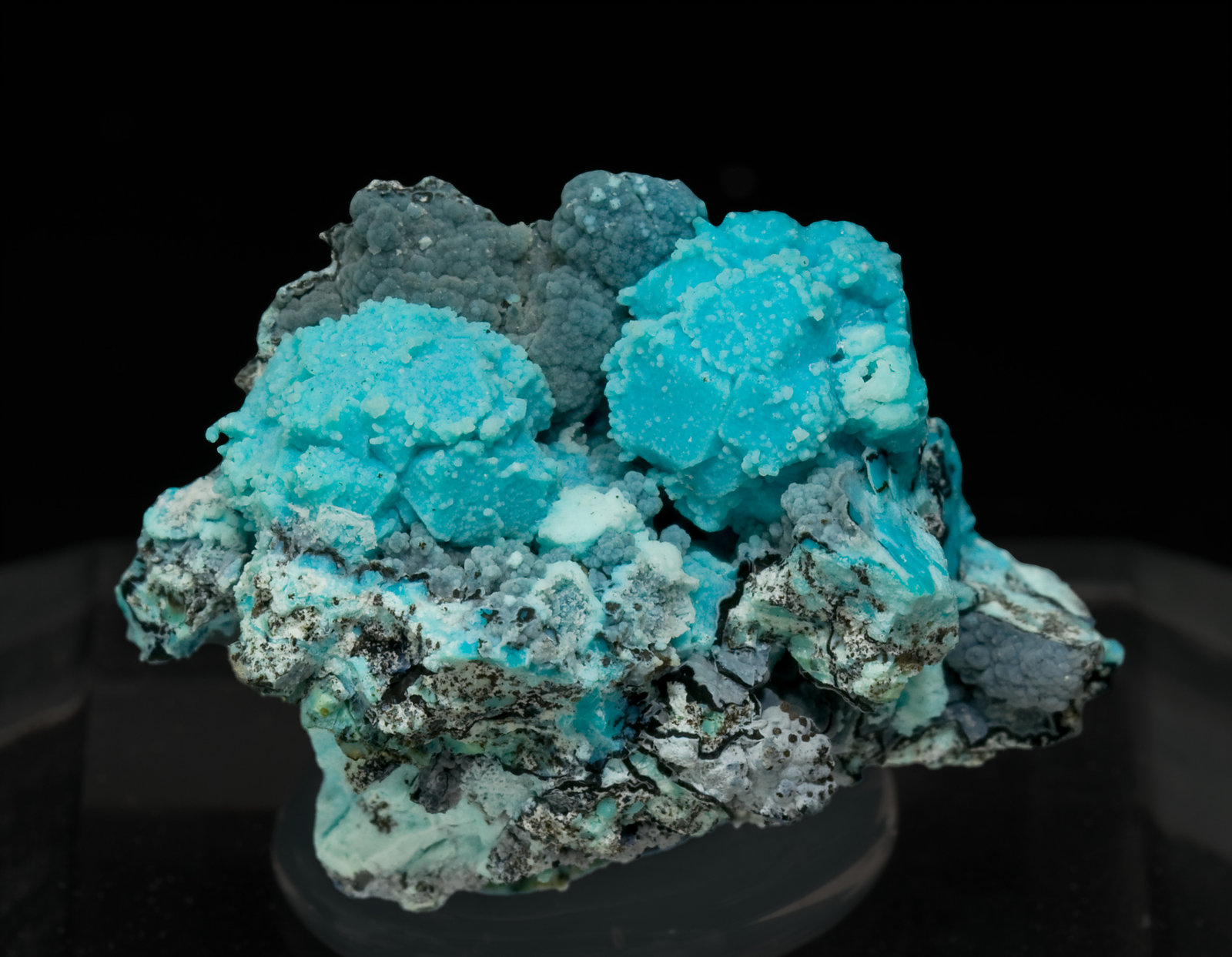 specimens/s_imagesS0/Chrysocolla_after_Boleite-TF13S0.jpg