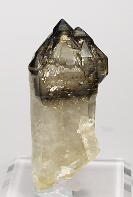 Sceptered smoky Quartz.