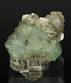 Octahedral Fluorite with Muscovite, Schorl, Fluorapatite and Beryl.