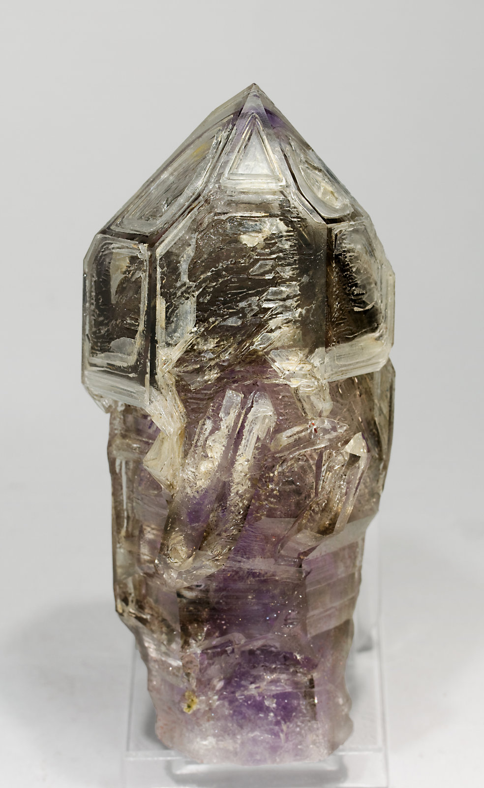 specimens/s_imagesS5/Quartz_Amethyst-TF91S5f.jpg