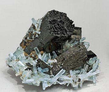 Schorl with Beryl (Aquamarine).