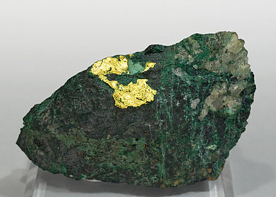 Gold with Malachite and Chalcocite.
