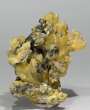 Pyromorphite with Galena. Rear