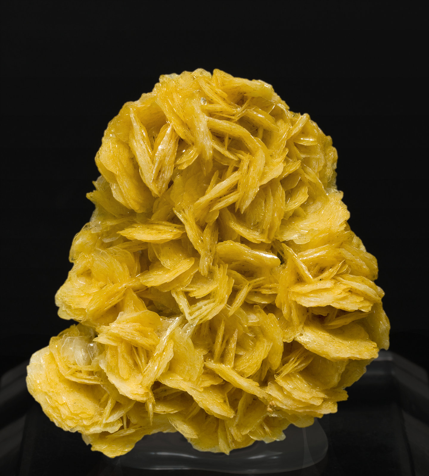 specimens/s_imagesS7/Wulfenite-MG96S7.jpg