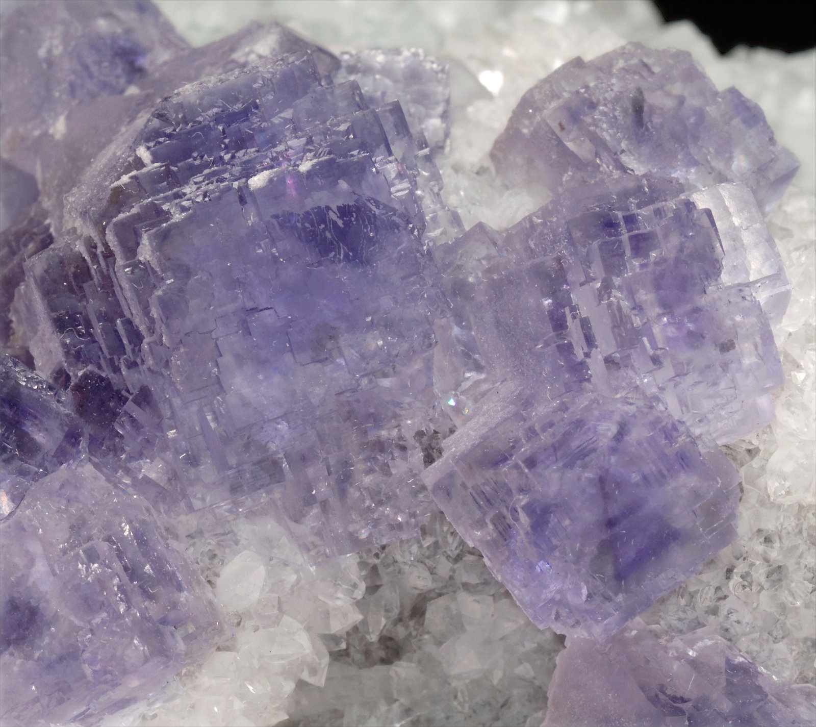 specimens/s_imagesT0/Fluorite-NZ47T0d.jpg