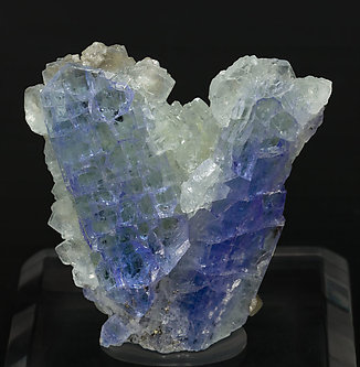 Zoisite (variety tanzanite) with Prehnite and Chabazite.