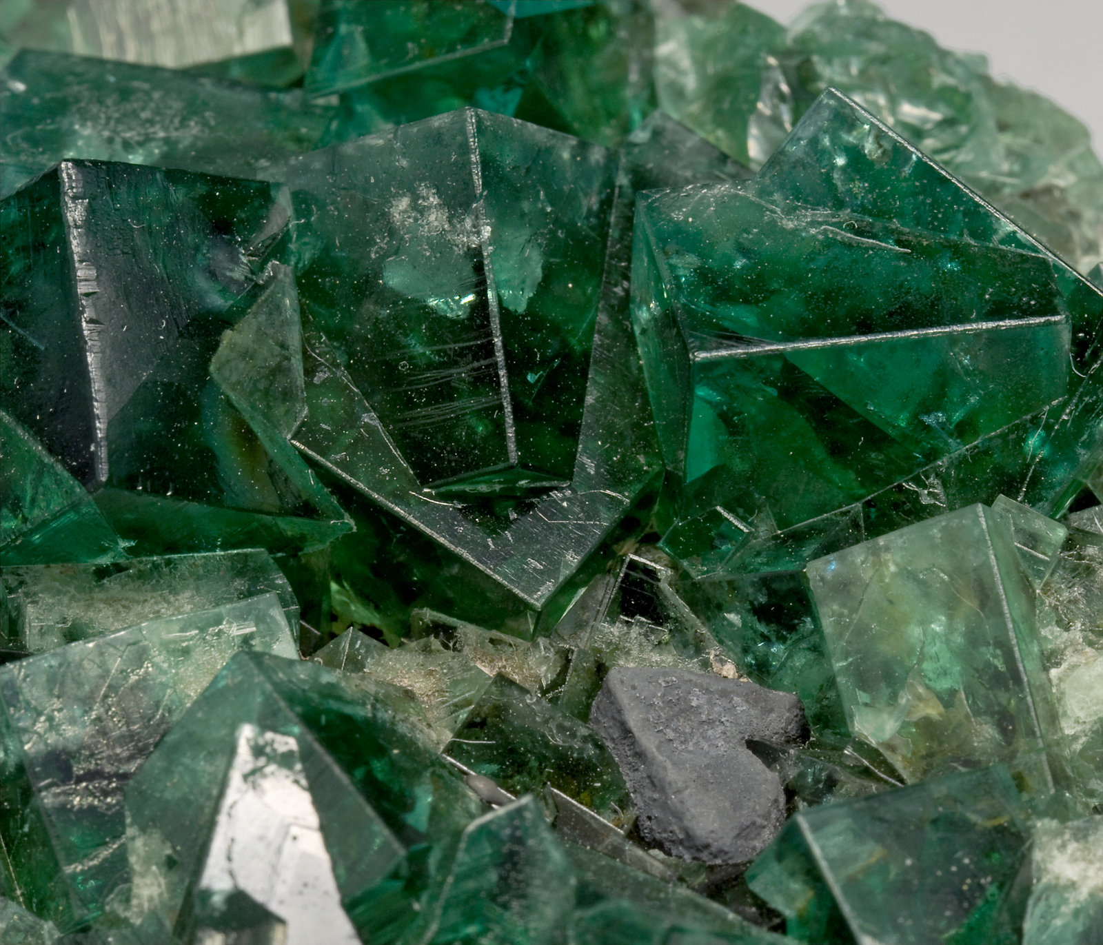 specimens/s_imagesT1/Fluorite-MX68T1d.jpg