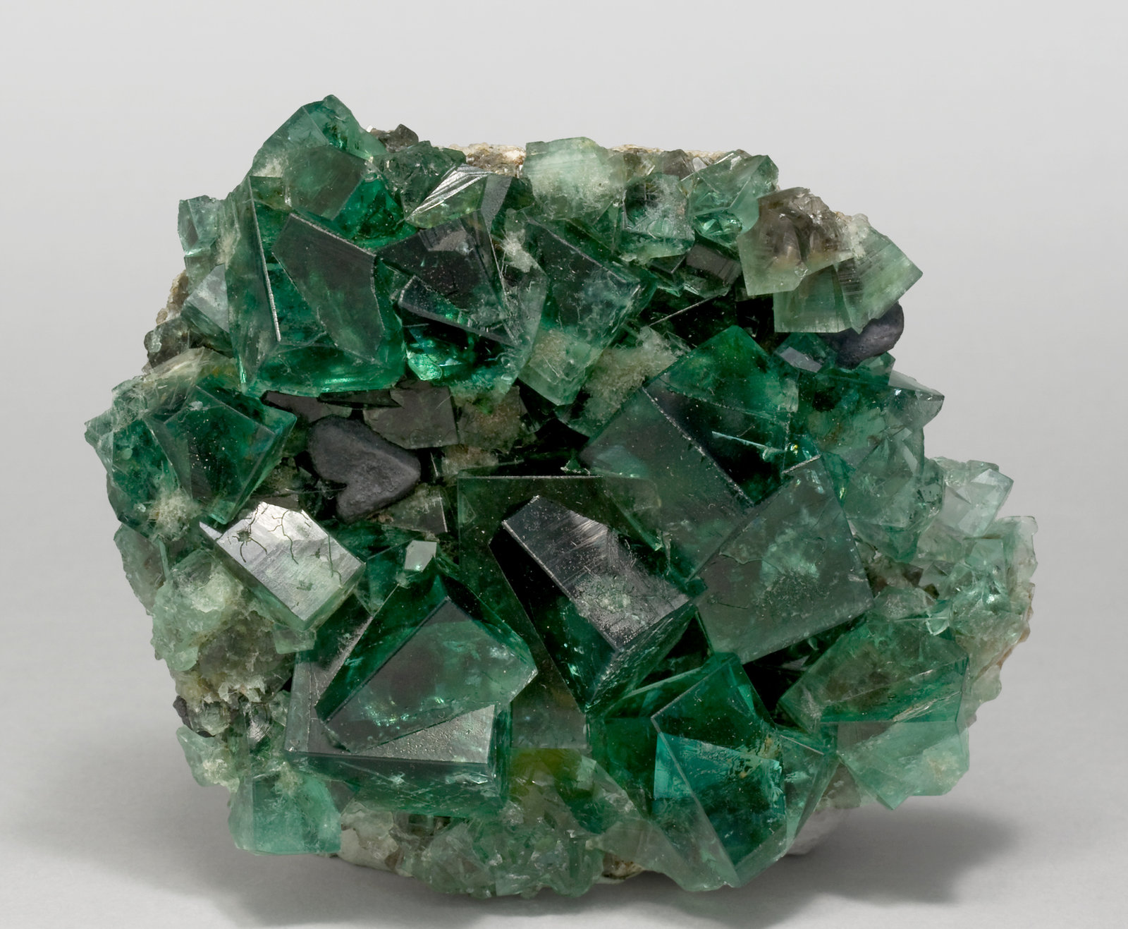 specimens/s_imagesT1/Fluorite-MX68T1f.jpg