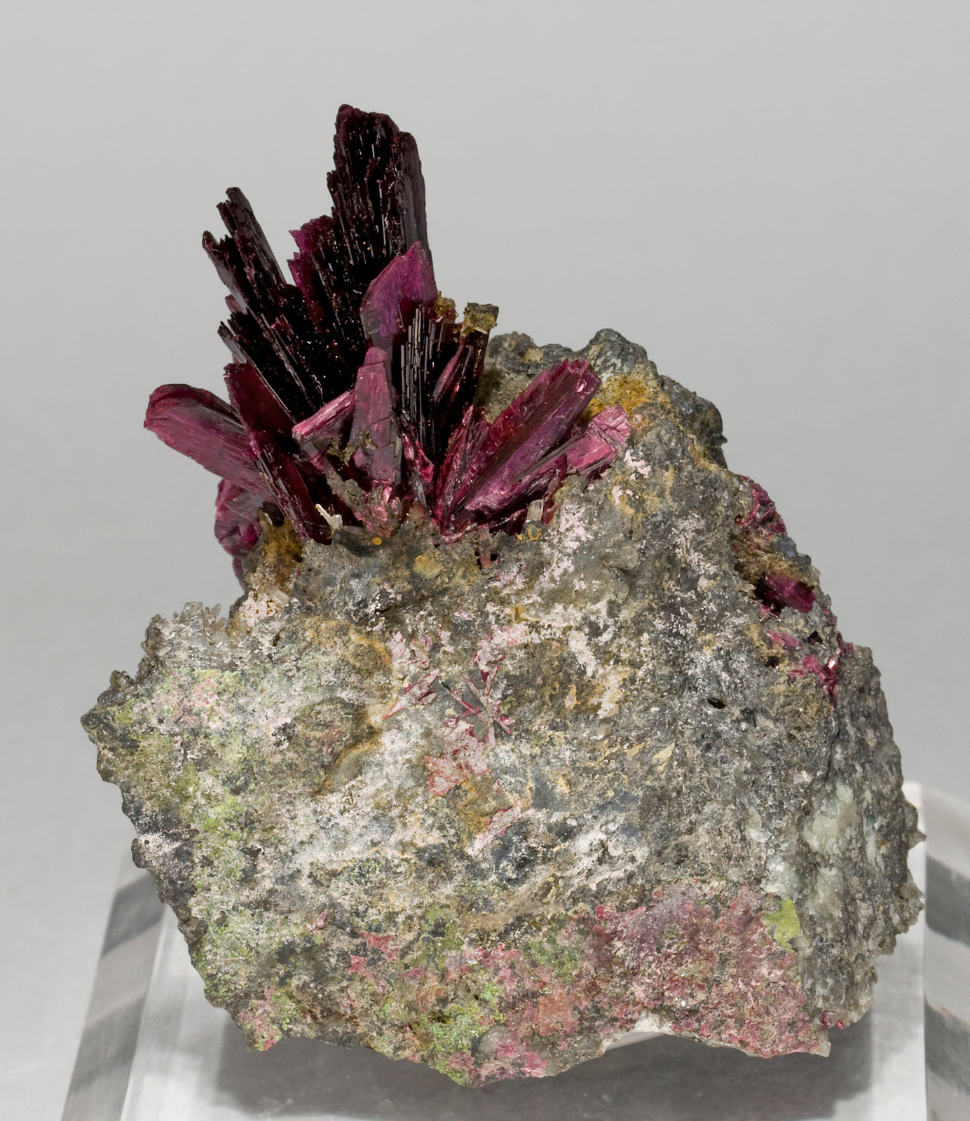 specimens/s_imagesT3/Erythrite-EX47T3s.jpg