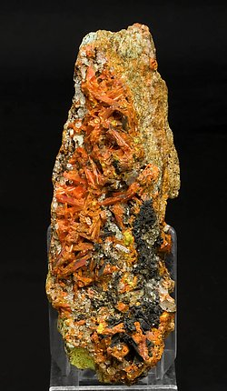 Crocoite with Vauquelinite and Quartz.