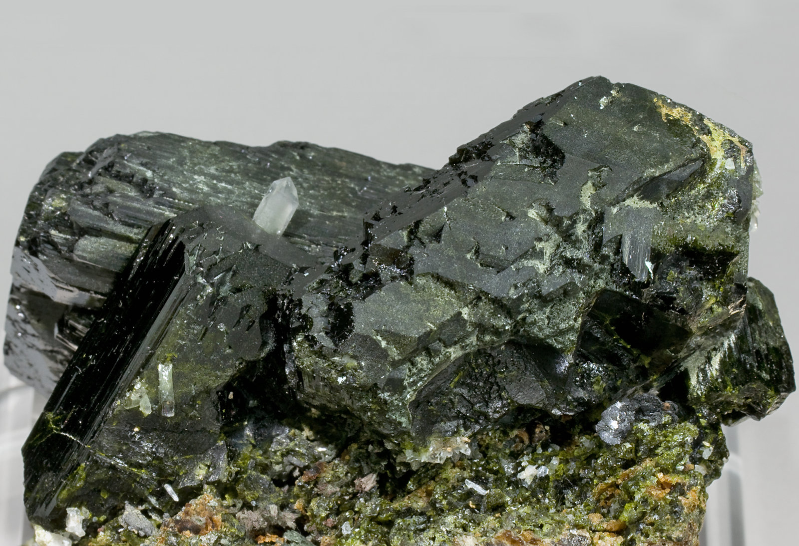 specimens/s_imagesT8/Epidote-TB47T8r.jpg